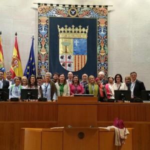 Jornada protocolaria Zaragoza 2015